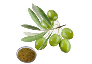 Olive Leaf Extract for slae- Lyphar.png