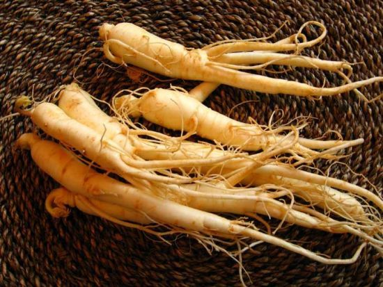 China Ginseng extracto en polvo- lyphar